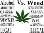 alcohol vs weeed