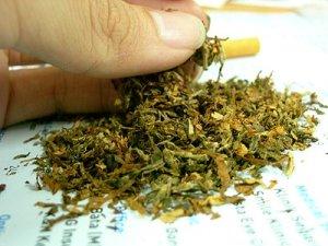 cannabis_tobacco_sift