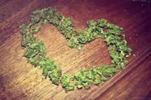 in love weed